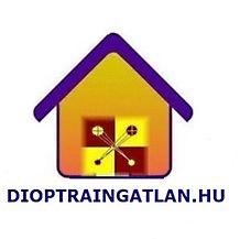 Dioptra 2007. Ingatlan